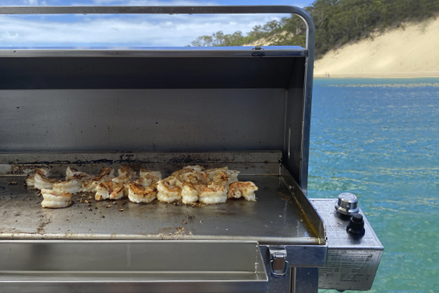 Australian made stainless steel boat bbq